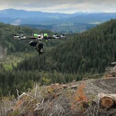 Precision Forestry: Drones Optimize Tree Planting | IOT