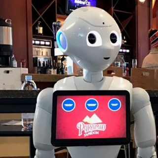 IoT robot in airlines